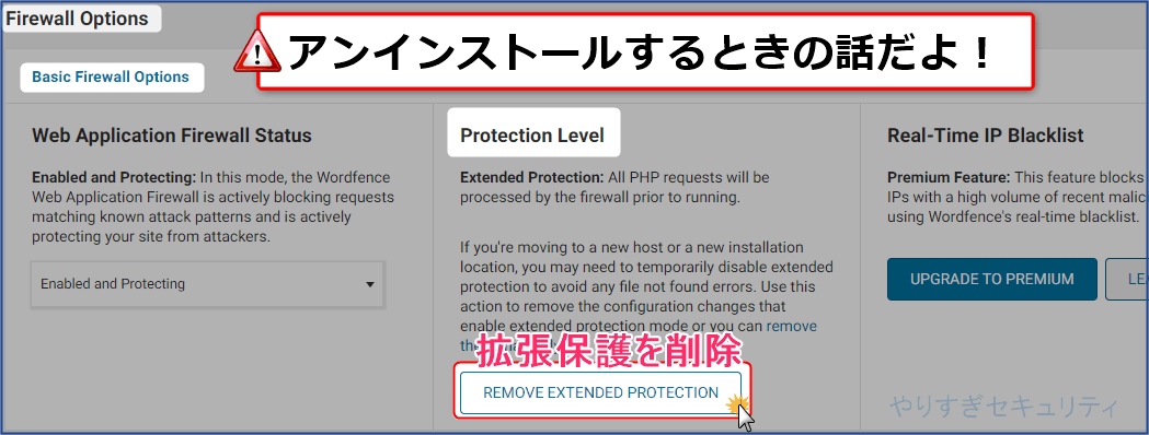 REMOVE EXTENDED PROTECTIONをクリック
